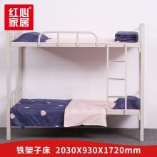 【红心家居】上下铺铁床成人床学生高低床铁艺床员工宿舍床2.03米单人床铁架床 2.03米床